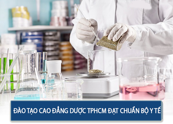 sao-tao-cao-dang-duoc-tphcm-dat-chuan-bo-y-te
