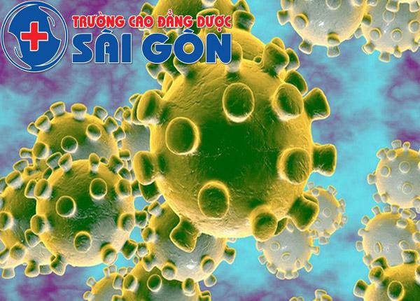 virus-CODID-19