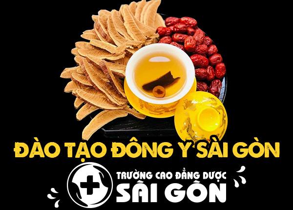 Đào tạo Đông Y Sài Gòn chất lượng nhất